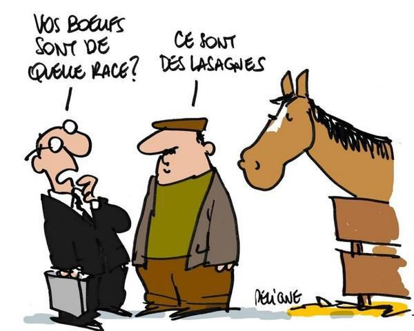 http://a406.idata.over-blog.com/600x480/0/19/24/98/drole/findus-Lasagnes-France-race-cheval.jpg